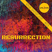 Resurrection WKM Showcase #03 by Various Artists
