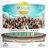 19° Festival voci d'oro 50 anni & dintorni - Volume 1 (Deluxe Edition) by Various Artists