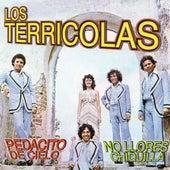 Pedacito de Cielo, No Llores Chiquilla by Los Terricolas