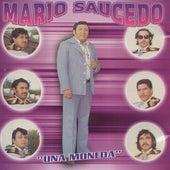 Una Moneda by Mario Saucedo