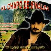 Te Hable Con El Corazon de El Chapo De Sinaloa