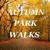 Autumn Park Walks by Various Artists