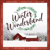 Winter Wonderland de Various Artists