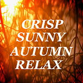 Crisp Sunny Autumn Mix by Various Artists