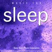 Deep Sleep Music Experience: