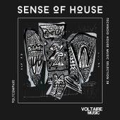 Sense of House, Vol. 38 (Technoid House Music Selection 38) de Various Artists
