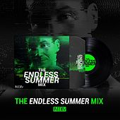The Endless Summer Mix by Various Artists