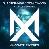 All I Ever Wanted von BlasterJaxx