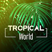 Tropical World – Deep Sun, Chillout Hits, Melodies to Rest, Cool Summer Time 2017 von Ibiza Chill Out