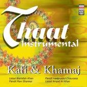 Thaat Instrumental (Kafi & Khamaj) by Various Artists