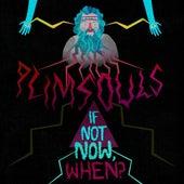 If Not Now, When? de The Plimsouls