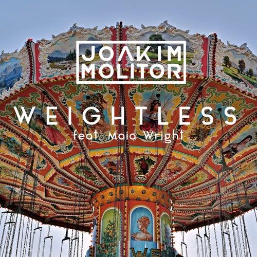 Weightless de Joakim Molitor