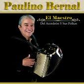 El Maestro Del Acordeòn by Paulino Bernal