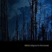 A Dog Lost In The Woods by Alka