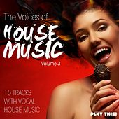 The Voices of House Music, Vol. 3 (15 Tracks with Vocal House Music) by Various Artists