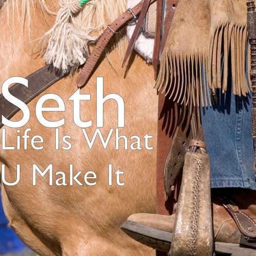 Life Is What U Make It by Seth
