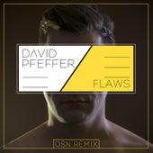 Flaws (OSN Remix) by David Pfeffer