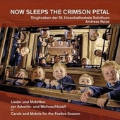 Now Sleeps the Crimson Petal by Singknaben der St. Ursenkathedrale Solothurn