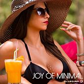 Joy Of Minimal - EP by Various Artists