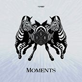 Moments de Various Artists