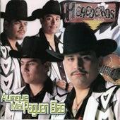 Aunque Mal Paguen Ellas by Los Herederos Del Norte