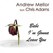 Babe I'm Gonna Leave You by Andrew Mellor
