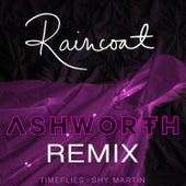 Raincoat (Ashworth Remix) by Timeflies