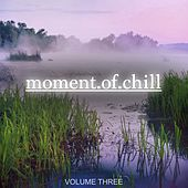 Moment Of Chill, Vol. 3 (Nothing But Wonderful Electronic Chill Out Music) by Various Artists