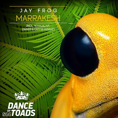 Marrakesh Remixes 3 by Jay Frog
