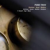 Smetana, Ravel & Watkins: Piano Trios (Live) de Various Artists