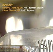 Schubert: Piano Trio No. 1, D. 898 & Trockne Blumen, D. 802 (Live) de Various Artists