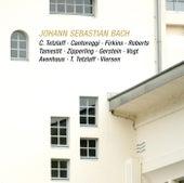 Johann Sebastian Bach: Brandenburg Concerto No. 6 - Viola da Gamba Sonata - Trio Sonata - Violin Sonata in F Minor (Live) de Various Artists
