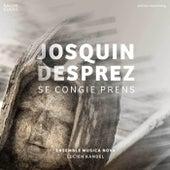 Desprez: Se congie prens by Various Artists