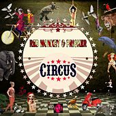 Circus by Red Monkey