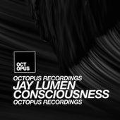 Consciousness by Jay Lumen