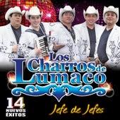 Jefe de Jefes by Los Charros De Lumaco