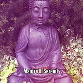 Mantra Of Serenity by Lullabies for Deep Meditation