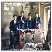 Quatuor Modigliani: Haydn de Quatuor Modigliani