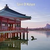 Spirit Of Nature de Massage Tribe