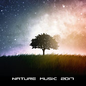 Nature Music 2017 – Deep Relaxing Music for Relief Stress, Rest, Reduce Anxiety de Sounds Of Nature