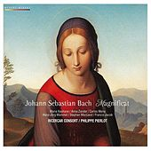 Bach: Magnificat BWV 243, Missa BWV 235 by Various Artists
