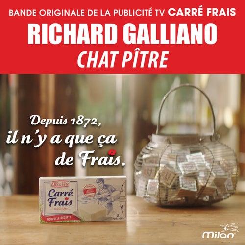 Chat Pitre (Musique de la Publicité 'Carré Frais') by Richard Galliano