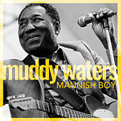 Mannish Boy de Muddy Waters