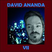 VII (Deluxe) by David Ananda
