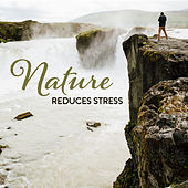Nature Reduces Stress – Peaceful Sounds to Calm Down, Ambient Music, Zen, New Age Melodies by Nature Sounds (1)