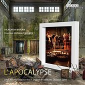Apocalypse by Various Artists