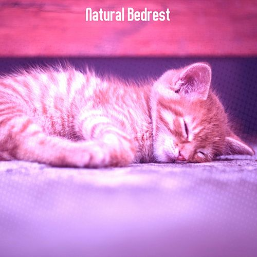 Natural Bedrest by Rockabye Lullaby