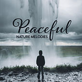 Peaceful Nature Melodies – Calming Sounds to Relax, Nature Waves, Healing Therapy, Forest Relaxation de Sounds Of Nature