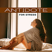 Antidote for Stress – Relaxing Music, Relief Stress, Antidepressant Songs, Calming Nature Sounds de Nature Sound Collection