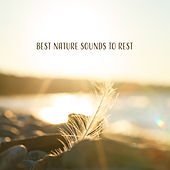 Best Nature Sounds to Rest – Pure Relaxation, Sounds of Forest, Deep Meditation, Peaceful Waves de Nature Sounds Artists